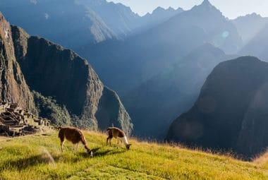 Sacred Valley,  Machu Picchu