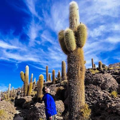 Chile, Atacama,  Bolivia,  Uyuni, Lake Titicaca, Machupicchu