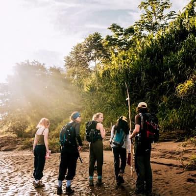 Wild Amazon Expedition Macaw Clay Lick & Sandoval Lake